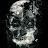 Tj Tjarks avatar image