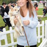 WWW.ENTSIMAGES.COM -      Lucy Watson   at       Pup Aid at Primrose Hill, London September 6th 2014Puppy Parade and fun dog show to raise awareness of the UK's cruel puppy farming trade. Pup Aid, the anti-puppy farming campaign started by TV Vet Marc Abraham, are calling on all animal lovers to contact their MP to support the debate on the sale of puppies and kittens in pet shops. Puppies & Celebrities Return To Fun Dog Show Fighting Cruel Puppy Farming Industry.                                              Photo Mobis Photos/OIC 0203 174 1069