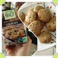 folle_blogueuse_cookies_bio