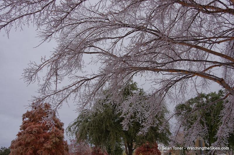 12-06-13 DFW Ice Storm - IMGP0444.JPG