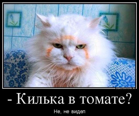 0_bba55_eba5413e_orig