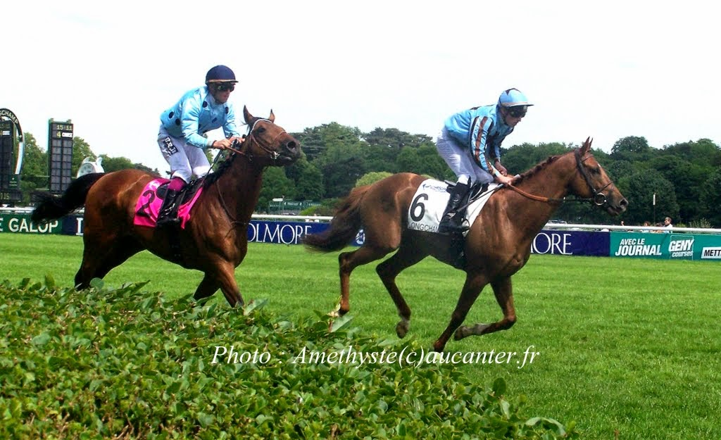 Photos Longchamp 25-05-2014 100_0048