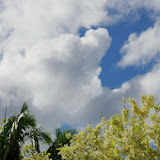 06-27-13 Spouting Horn & Kauai South Shore - IMGP9791.JPG