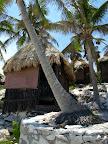 Unsere Huette mit Palmen