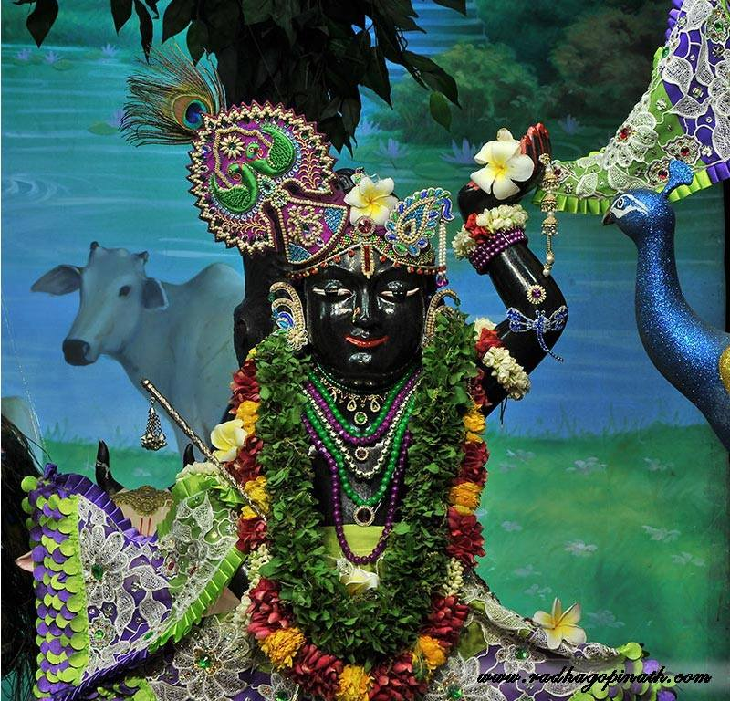 ISKCON Chowpatty Deity Darshan 08 April 2016 (9)