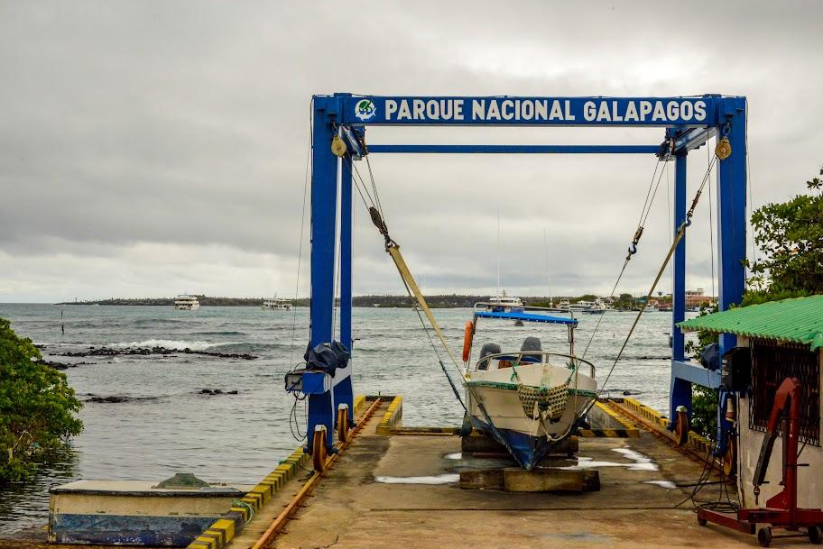 galapagos - galapagos_3-90.jpg