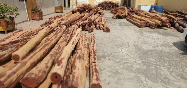Polícia apreende carga de madeira exótica no valor de R$ 200 mil no interior da Bahia