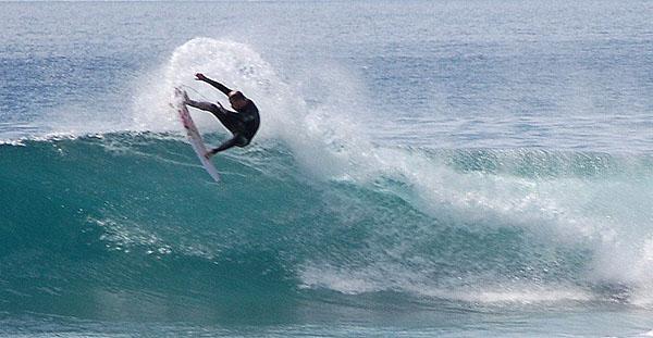 surfs%252520up%252520Shari%252520BOndy.jpg