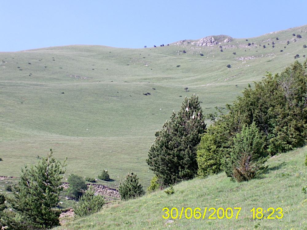 Taga 2007 - PIC_0042.JPG