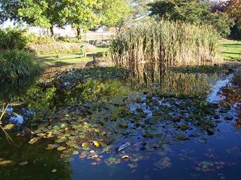 2008.10.10-024 jardin public