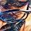 Manu Vishal's profile photo