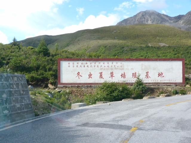 CHINE SICHUAN.KANDING , MO XI, et retour à KANDING fête du PCC - 1sichuan%2B1592.JPG