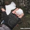 2014-05-26 10-58 W drodze na Chimborazo, śnieg opodal równika!.JPG