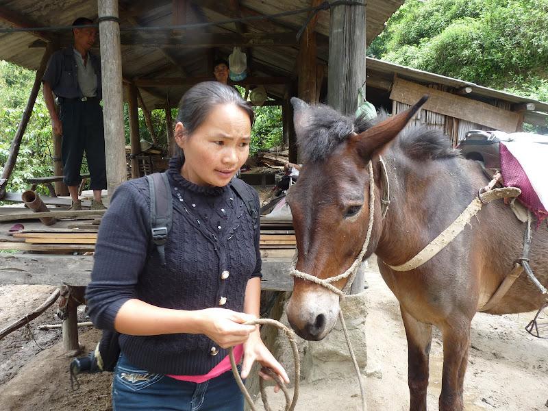 Chine .Yunnan,Menglian ,Tenchong, He shun, Chongning B - Picture%2B917.jpg
