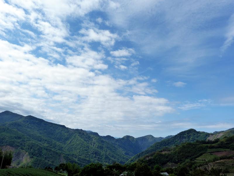 TAIWAN  Dans la region d ALISHAN - P1130870.JPG