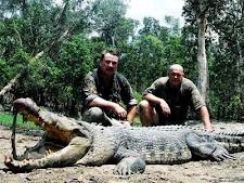 crocodile_hunting_6_large.jpg