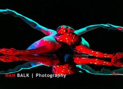 Han Balk Wonderland-7389.jpg