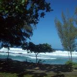 Hawaii Day 3 - 100_6974.JPG