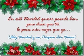 feliz navidad buenanavidad (6)