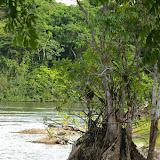 Saut Athanase sur l'Approuague (Guyane). 20 novembre 2011. Photo : J.-M. Gayman