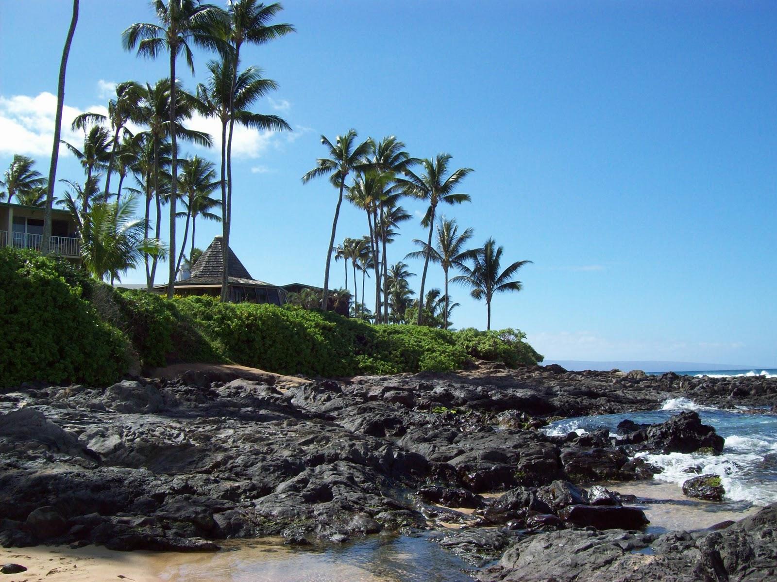 Hawaii Day 6 - 100_7687.JPG