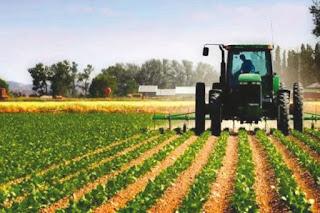 Politique de diversification économique Place à l'investissement privé dans le secteur agricole algérien