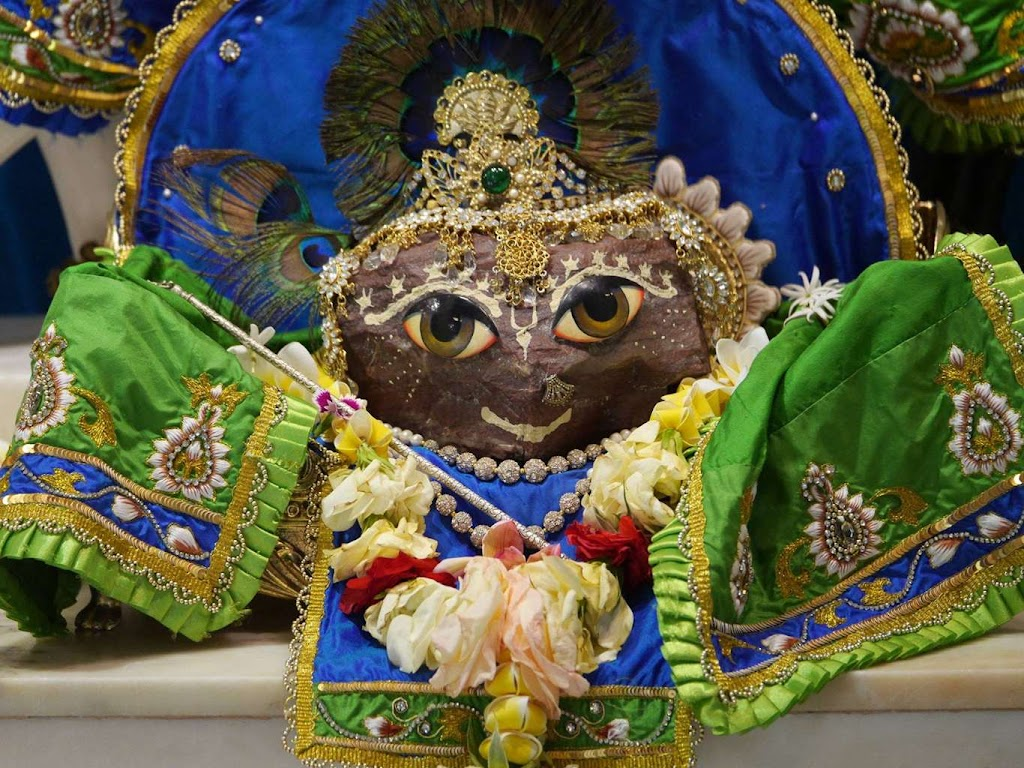 ISKCON New Govardhana Deity Darshan 09 Dec 2015 (20)