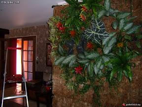 mur végétal interieur en sphaigne crée par un particulier a vidauban dans le var