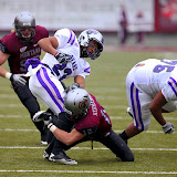 Central Arkansas running back, #23 Anthony Blackmon, fumbles the ball after being hit by Grizzly safety, Matt Hermanson.