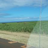 Hawaii Day 8 - 100_8160.JPG