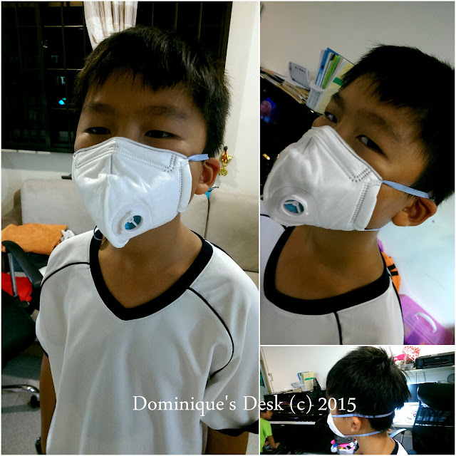 Monkey boy wearing the Air + Smart Mask