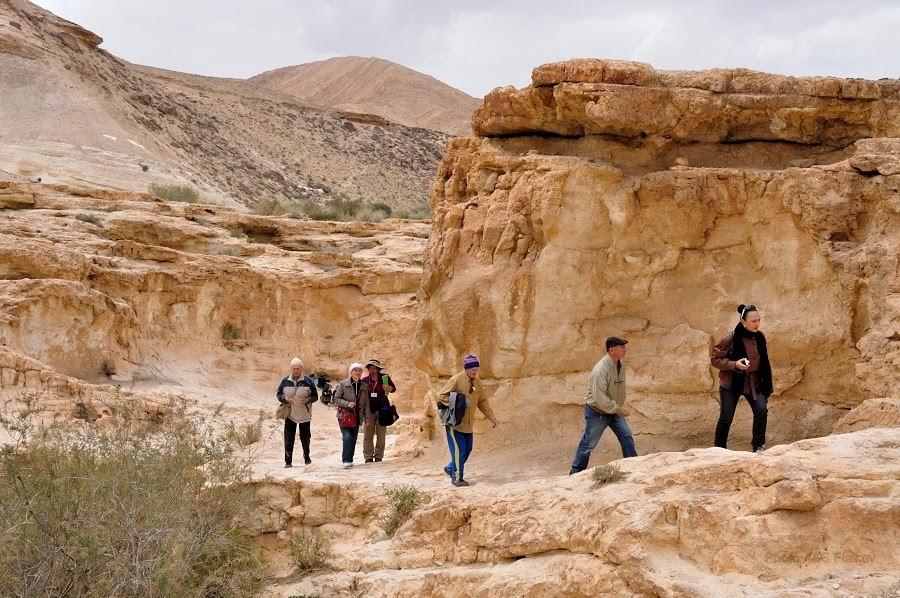 Мы возвращаемся из Эйн Йоркам. Экскурсия гида Светланы Фиалковой в пустыню Негев.