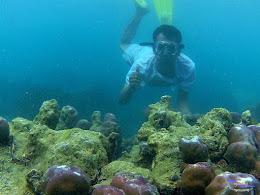 pulau pari 050516 GoPro 09