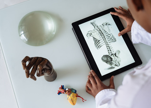 What is Anatomy and Physiology? Fundamentals, Uses And Requirement Full Overview