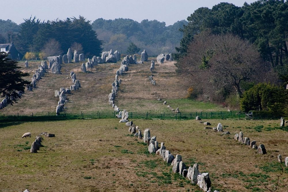 carnac-alignments-stone-7