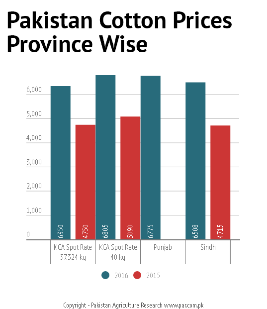 pak cotton offering price