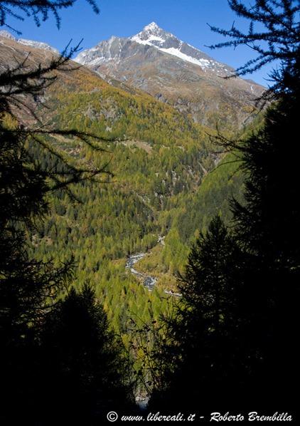2015-10-11_Chiareggio-Porro_Valmalenco_027