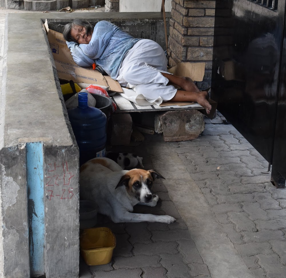 Another homeless lady sleeps, this one with several pet dogs.  The dog glares at me while I take photos, but doesn't bark.  Good homeless doggy.