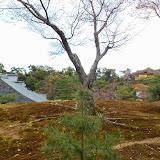2014 Japan - Dag 8 - tom-SAM_0550-0055.JPG