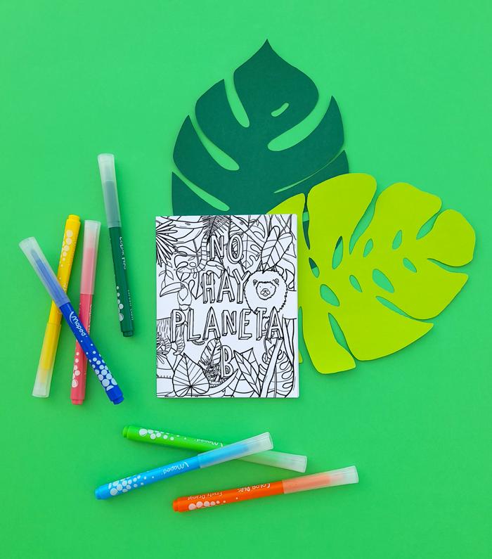 medio ambiente, cuidado, protección, biodiversidad, ecoamigable, sostenibilidad, niños, niñas, páginas de colorear, juegos, rompecabezas, sopa de letras, crucigrama, laberinto, mensaje codificado