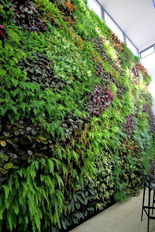 Jardín vertical de interior en Castellón
