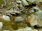 HINTERLAND Ikaria 31: Stream inside the protected valley