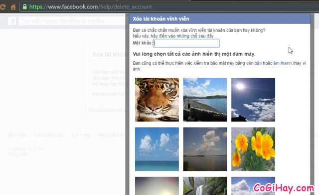 Nhập lại mật khẩu Facebook