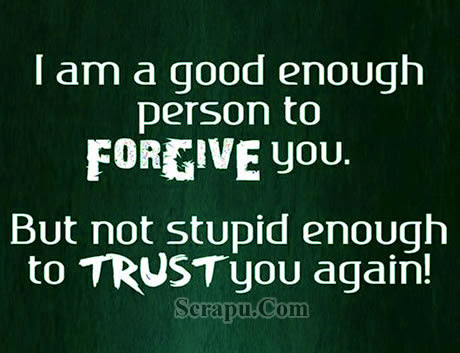 I am not stupid enough to trust again image