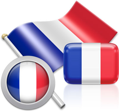 French flag icons pictures collection