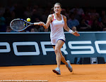 Agnieszka Radwanska - Porsche Tennis Grand Prix -DSC_6124.jpg