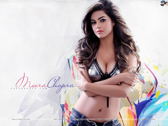 Meera chopra Hot Photo gallery-Sexiest Navel & Cleavage Show ever