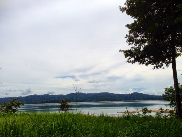 View near Mutiara Pedu Lake gate