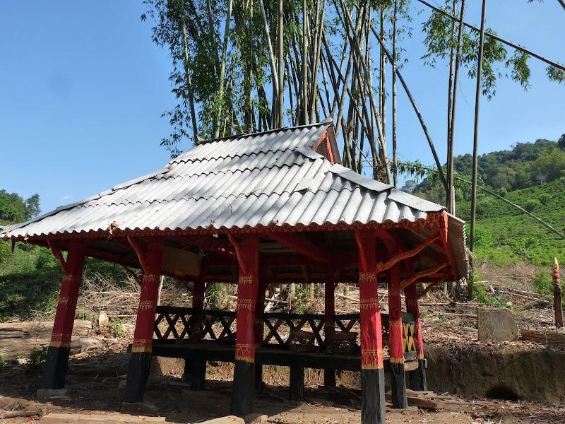 Chine: randonnée xishangbanna, région de Bada - Picture%2B842.jpg