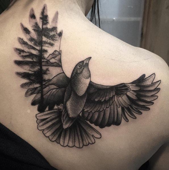 Esta exposição duplo preto e cinza tinta pássaro